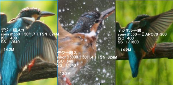 compare0003.jpg